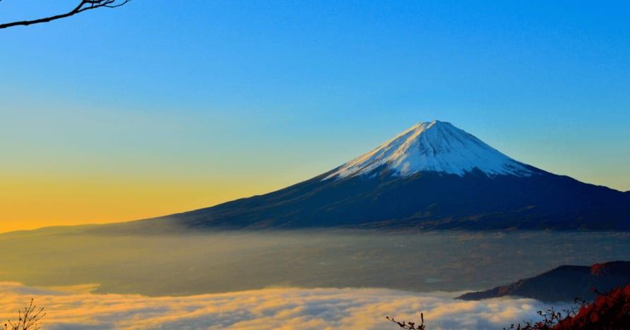 Japonija mano, atskaitomi mokesčiai iš užsieniečio laimėjimo