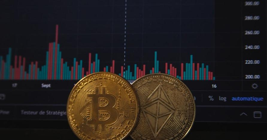 """""""Bitcoin"""" lošimai didės po paskutinio """"PayPal"""" pranešimo"""